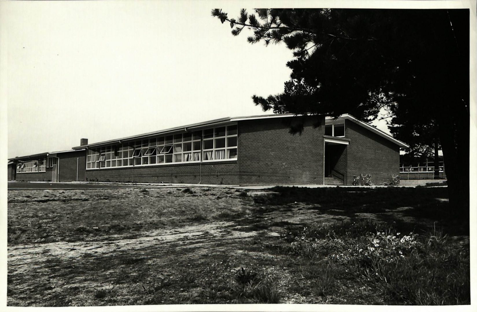 Mimosa Primary School then